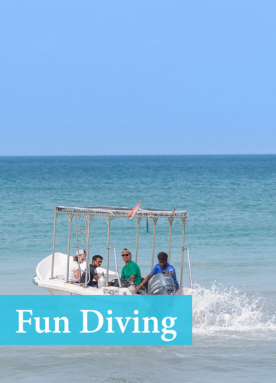 Best Price for Fun Diving and diving packages in Sri Lanka with Divinguru