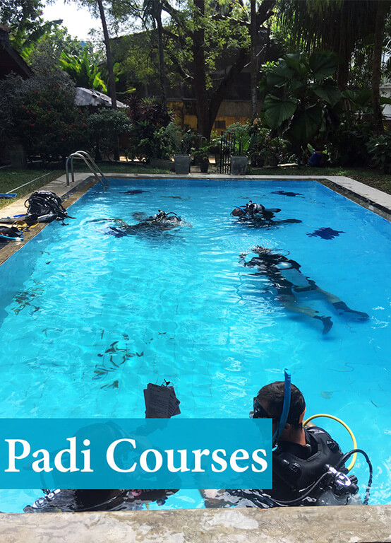 PADI Scuba Diving Courses including accommodation in Sri Lanka activities for the whole family